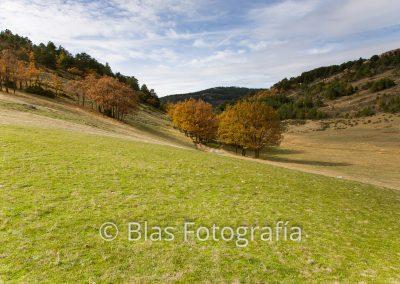Bronchales, Teruel