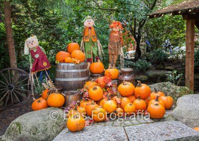 Halloween en Capilano Park