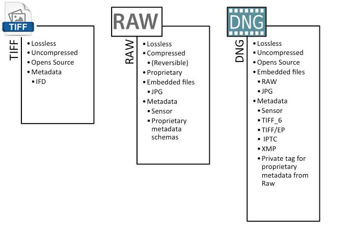 Formatos de imagen TIFF, DNG y OpenRAW