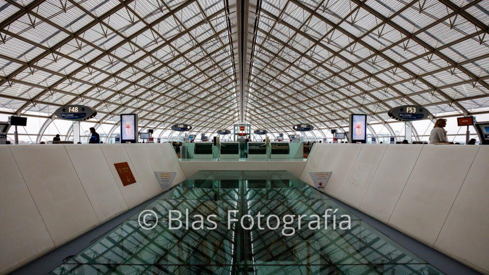 Aeropuerto Charles de Gaulle (V)
