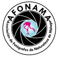 AFONAMA