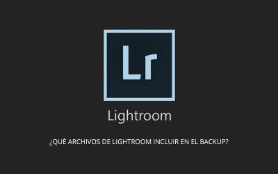 ¿Qué archivos de Lightroom incluir en el backup?